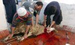 Sette denunce per macellazione clandestina col rituale islamico. Ma i titolari degli allevamenti sono… italiani