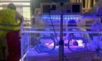 Gravidanze: in Toscana sempre meno nascite