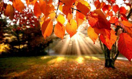 L'equinozio d'autunno? E' oggi, 23 settembre, alle 9.50