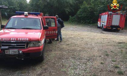 Si perde nel bosco: in soccorso anche l'elicottero