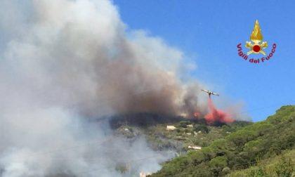 Incendio Monte Serra: ecco i dati sull'inquinamento