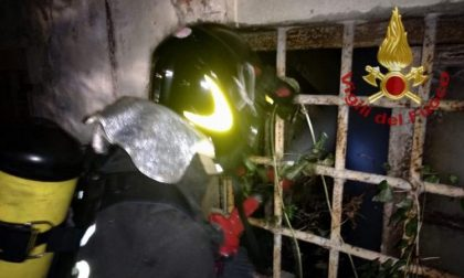 Incendio nella colonia felina di San Salvi