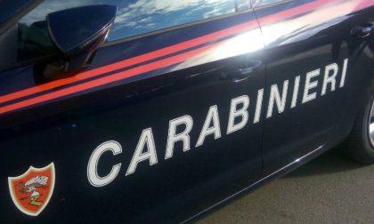 Per sfuggire al controllo dei Carabinieri si nascondono dentro un cespuglio di spine