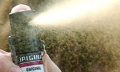 Spruzza spray urticante in un bar a Campi