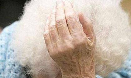 INCREDIBILE: 90enne indagata per la morte di una gallina