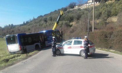 Autista del bus sbaglia strada e finisce in un campo