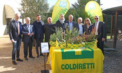 Giorgio Tesi Group dona 10 mila piantine per Monte Pisano