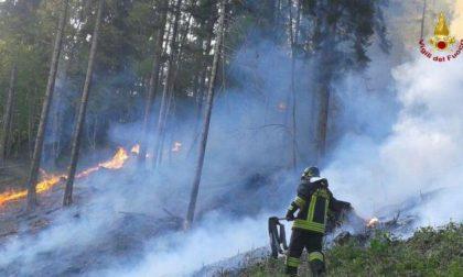 Incendio a Stazzema, consumati 50 ettari di prati e pascolo