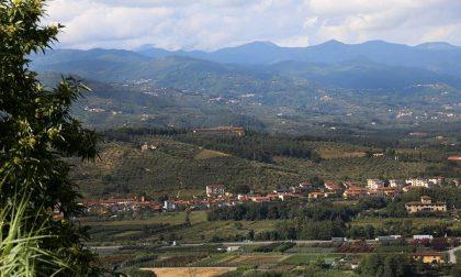 Il vivaismo a Pistoia compie 170 anni: ecco la sua storia
