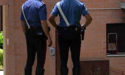 Nasconde una scacciacani nel giardino di un condominio, denunciato 36enne