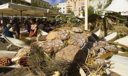 Si sdoppia la «Festa del Pane» di Certaldo