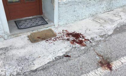Accoltella e picchia il padrone di casa in via Modenese: arrestato inquilino di 40 anni