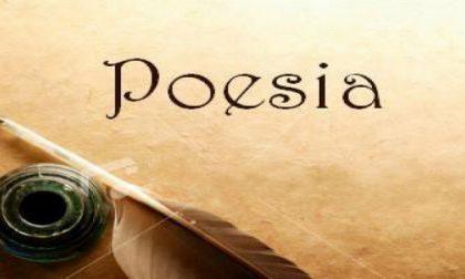 """Concorso di poesia """"Sogna ragazzo sogna"""": scadenza prorogata al 21 giugno"""