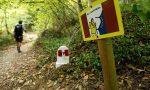 Comune di Monteriggioni, continua la permanenza nell'AEVF