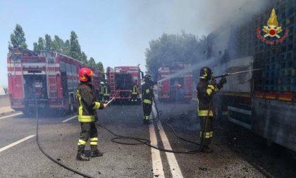 Camion prende fuoco sulla Fi-Pi-Li
