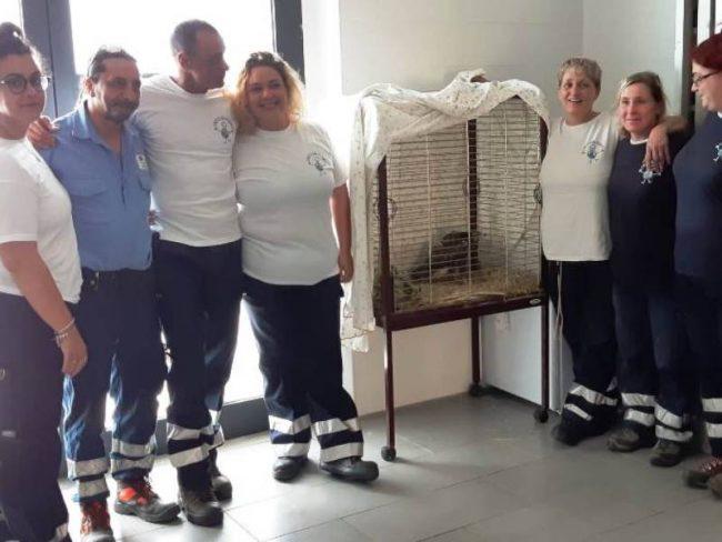 L'ex macello diventa luogo di accoglienza e cura per animali