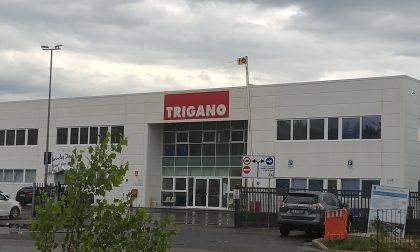 Scadenza contratti Trigano: 61 terminano ad agosto