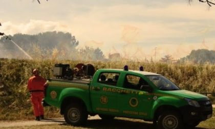 Bruciano rifiuti speciali, colti sul fatto dai forestali