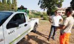 Stop alle zanzare: continua l'impegno sul territorio comunale