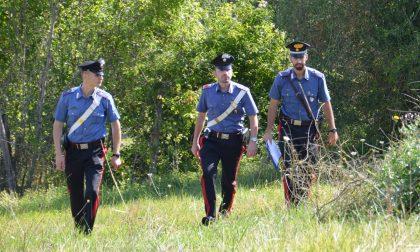 Due olandesi dispersi nei boschi ritrovati dai Carabinieri