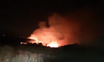 Incendio in Padule nella notte: fiamme alte ma i Vigili del Fuoco lo domano