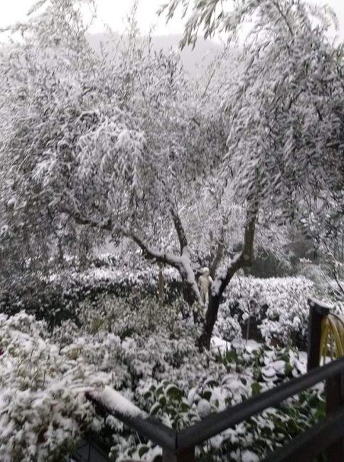 Prima neve della stagione in Vallata