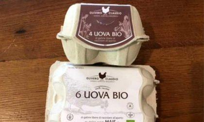 Uova ritirate dal mercato per contaminazione microbiologica