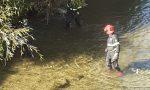 Vigili del fuoco salvano airone