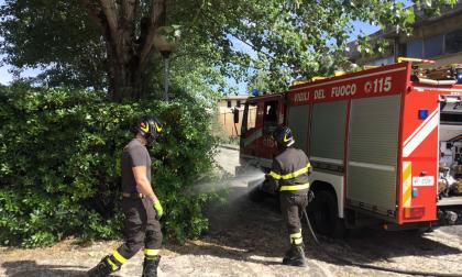 Incendio in via della Querciola, in corso l'intervento dei vigili del fuoco