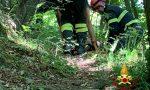 Vernio: ha un malore nel bosco -LE FOTO