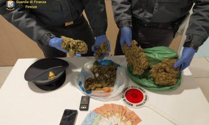 Vendeva marijuana dal balcone di casa: arrestato ventenne fiorentino