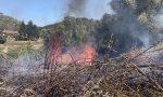 Incendio a Poggio alla Malva, nella zona di via Pineta