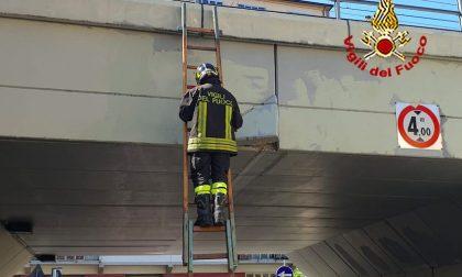 Vigili del fuoco in viale dei Cadorna: ecco perché