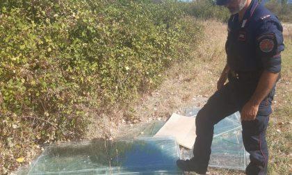 Carabinieri forestali scoprono smaltimento illecito di rifiuti speciali: denunciate due persone
