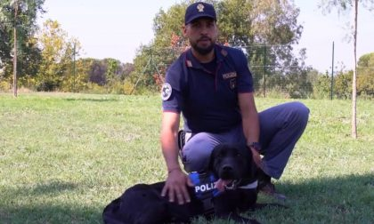 Se non ti porto non parto: il video della Polizia di Stato contro gli abbandoni degli animali – GUARDA IL VIDEO