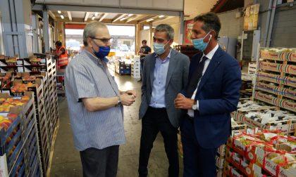 """Mercafir, visita di Jacopo Cellai (FI): """"La riqualificazione non può più aspettare"""""""