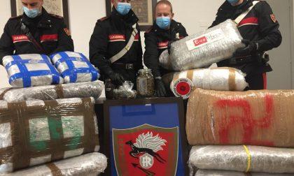 Finti traslocatori trovati con quasi 80 chilogrammi di marijuana: TUTTE LE FOTO