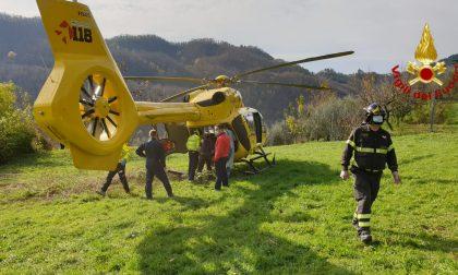 Malore durante la raccolta delle olive, l'intervento dei Vigili del fuoco