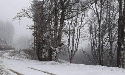 Arriva la prima neve a Montepiano, nella zona di Gasperone LE FOTO