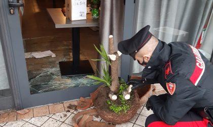 Arrestato dai Carabinieri l'autore di una spaccata
