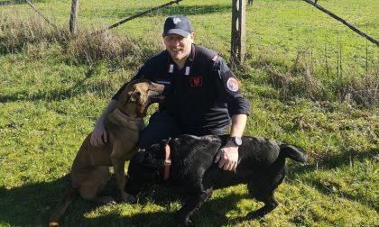 I cani del Reparto antiveleno per scovare i bocconi mortali