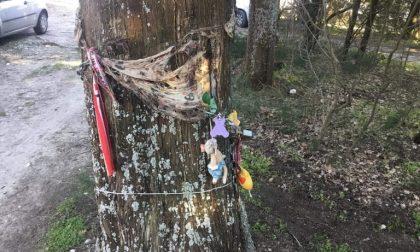 Riti satanici o malefici: alle pendici di Monte Morello scenario riconducibile a qualche tipo di rituale