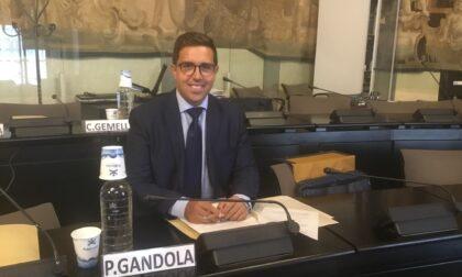 """Paolo Gandola (FI) e le inchieste recenti: """"Ci sono delle storture da correggere"""""""
