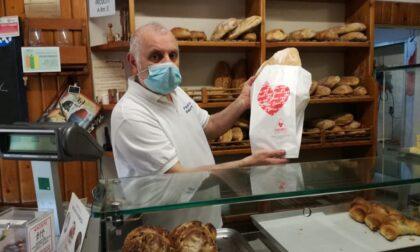 """Nella Piana spopolano le buste del pane targate """"Gruppo Fratres"""" per promuovere la donazione del sangue"""