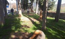Intitolazione del giardino via Riva. I bambini hanno scelto il nome