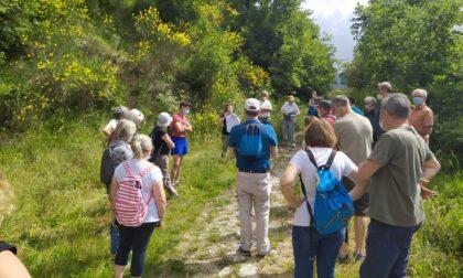 Per il solstizio d'estate escursione da San Leonardo alla Calvana