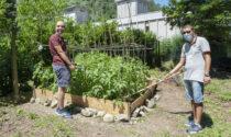 Nell'antico frantoio l'orto coltivato dai ragazzi autistici