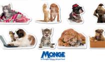 Originali stickers in regalo col giornale Bisenziosette