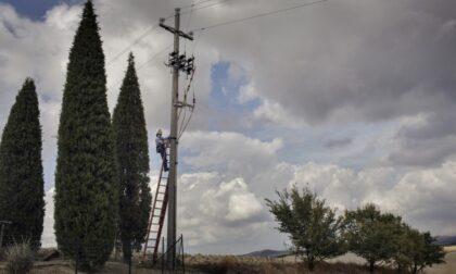 Carmignano, sabato intervento di deramifiazione e taglio piante nei pressi delle linee elterriche lungo via Baccheretana