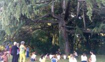 Il giardino svelato, gli abitanti segreti del Mulinaccio